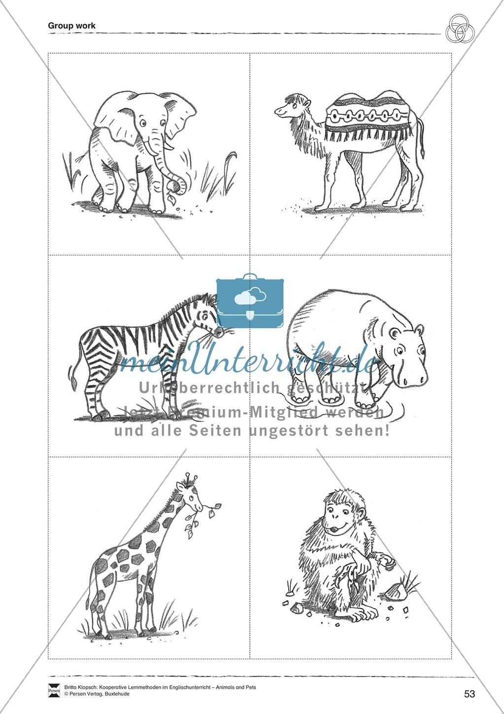 Kooperatives Lernen: Themenbereich Zoo Animals + Kopiervorlagen Preview 28