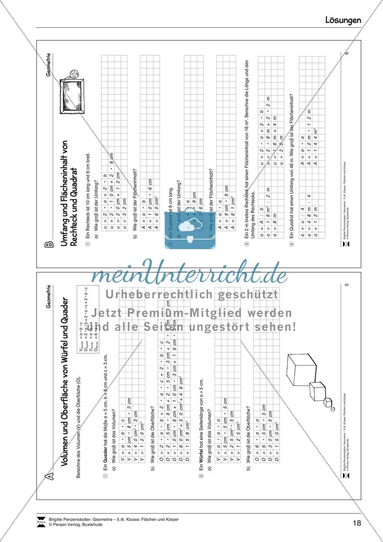 Umfang und Flächeninhalt von Rechteck und Quadrat - meinUnterricht
