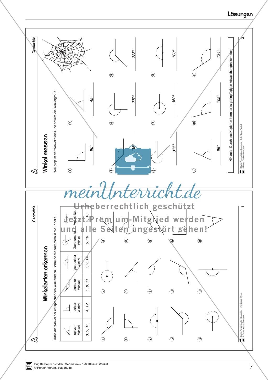 Winkelarten erkennen - spitzer, rechter, stupfer, gestreckter, überstumpfer und Vollwinkel Preview 3