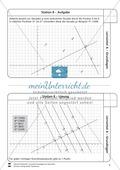 Lernzirkel zu Grundlagen der Geometrie: Koordinatensystem, Spiegelung, Senkrechten und Parallelen, optische Täuschungen Preview 9