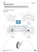Formen und Muster - geometrische Figuren erkennen und zählen Preview 6