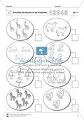 Zahlen und Mengen im Zahlenraum bis 5 mit SchülerInnen mit geistiger Behinderung entdecken Preview 5