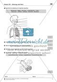 Atmung und Herz Preview 1
