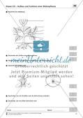 Aufbau und Funktion einer Blütenpflanze Preview 2