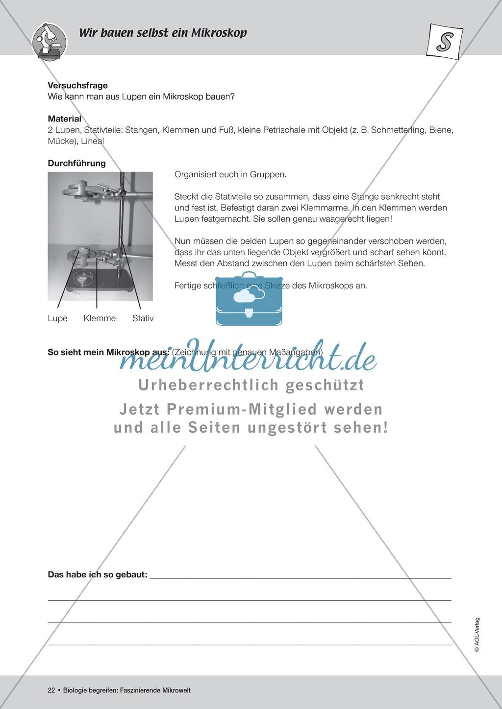 Famous Abstand Arbeitsblatt Festooning - Kindergarten Arbeitsblatt ...