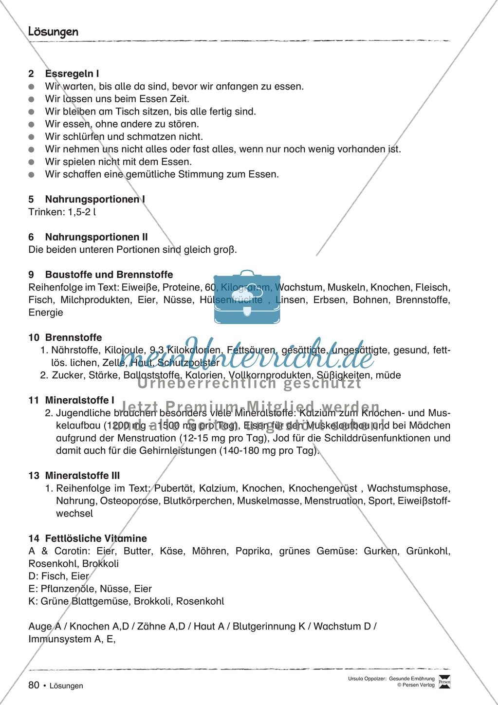 Arbeitsblätter zum Thema Nährstoffe Preview 8