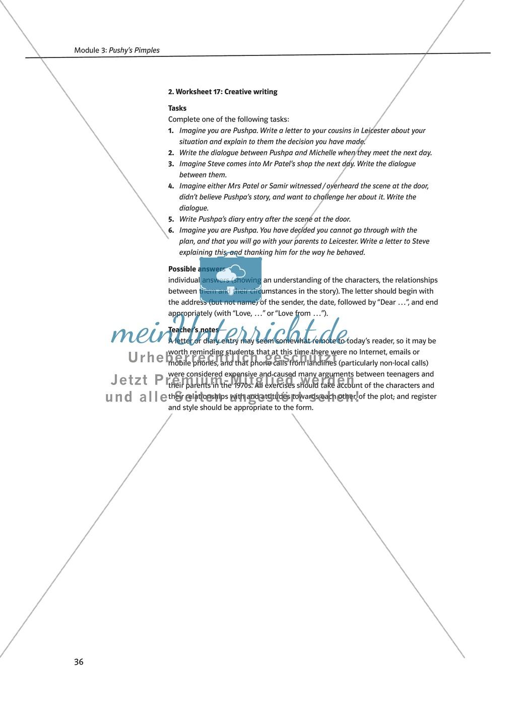 Pushy's Pimples: Zusammenfassung + Aufgaben + Arbeitsblätter Preview 9