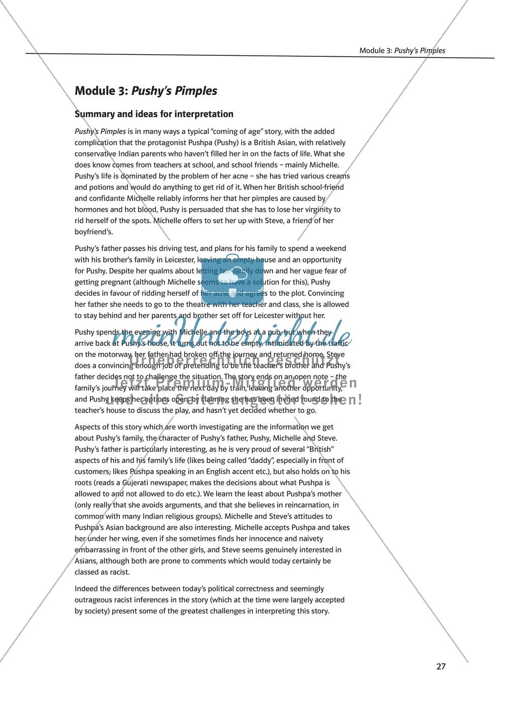 Pushy's Pimples: Zusammenfassung + Aufgaben + Arbeitsblätter Preview 0