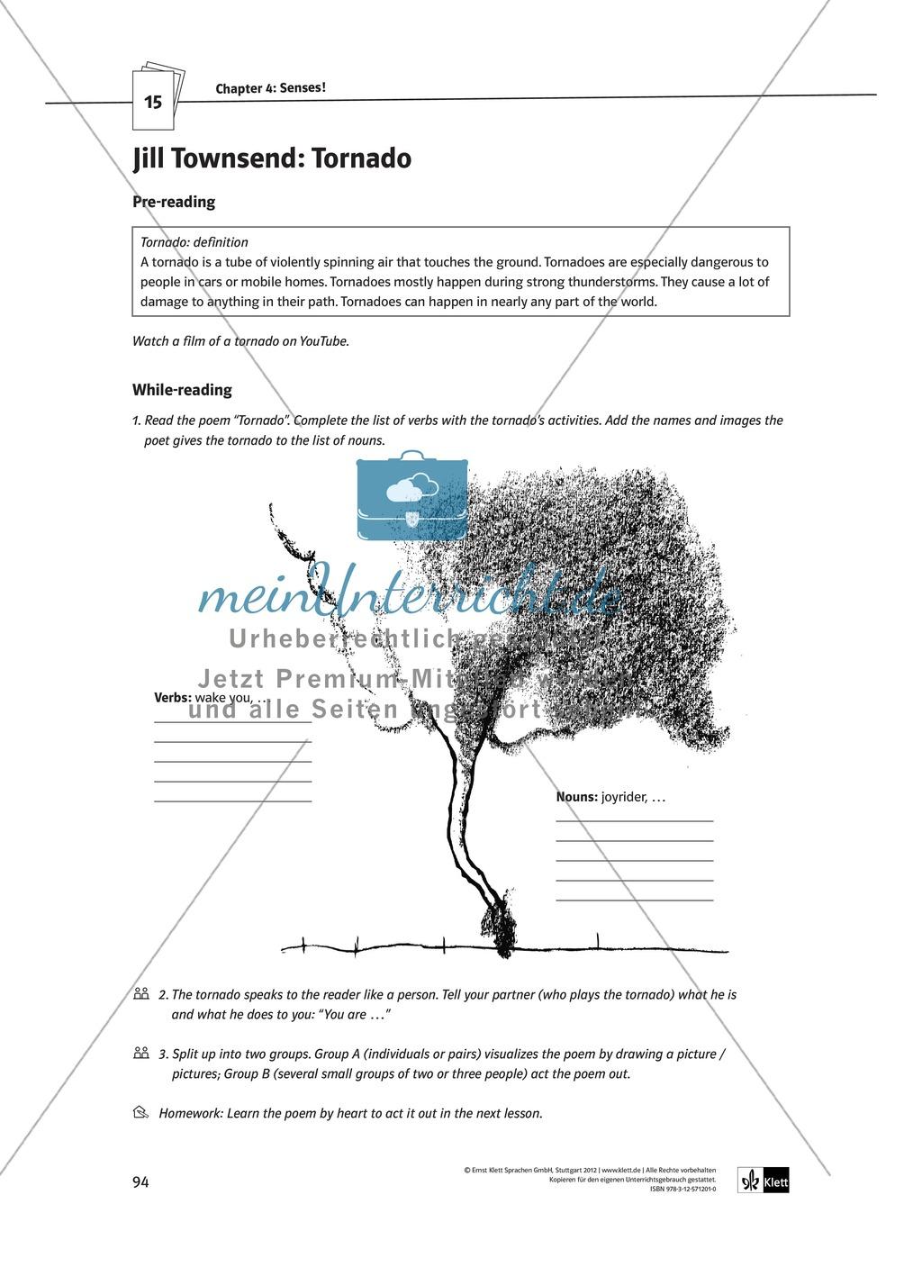 The Poetry Box: Wild Things? Beispiele + Lernziele + Verfahren + Arbeitsblätter Preview 22