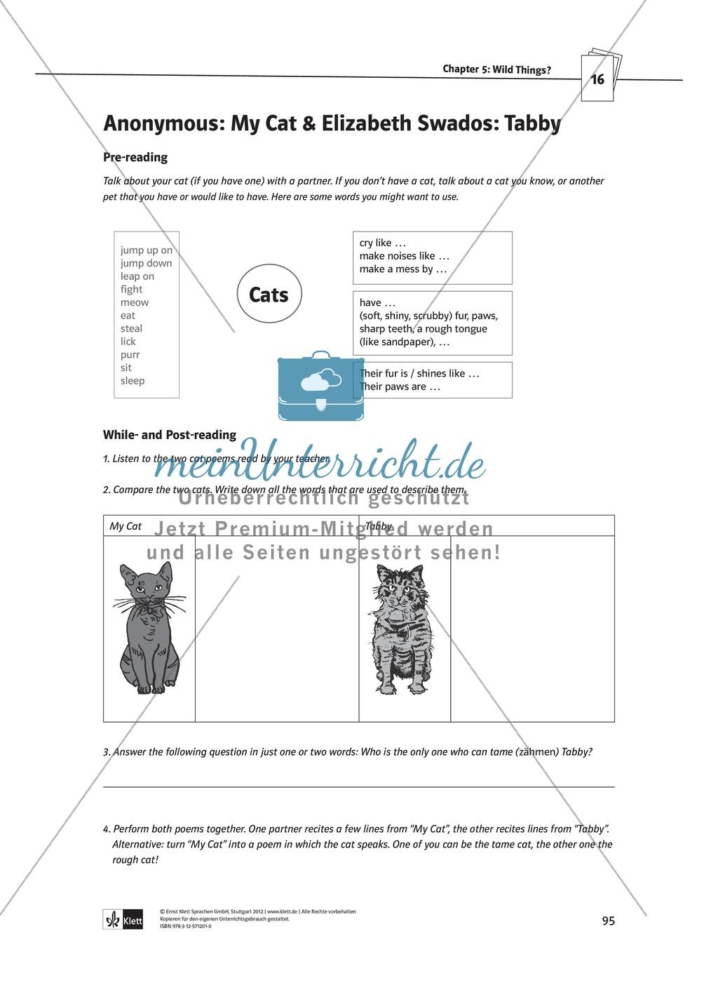 The Poetry Box: Wild Things? Beispiele + Lernziele + Verfahren + Arbeitsblätter Preview 23
