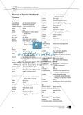 Teaching the Novel in the Classroom: Inhaltszusammenfassung + Kopiervorlagen Preview 26