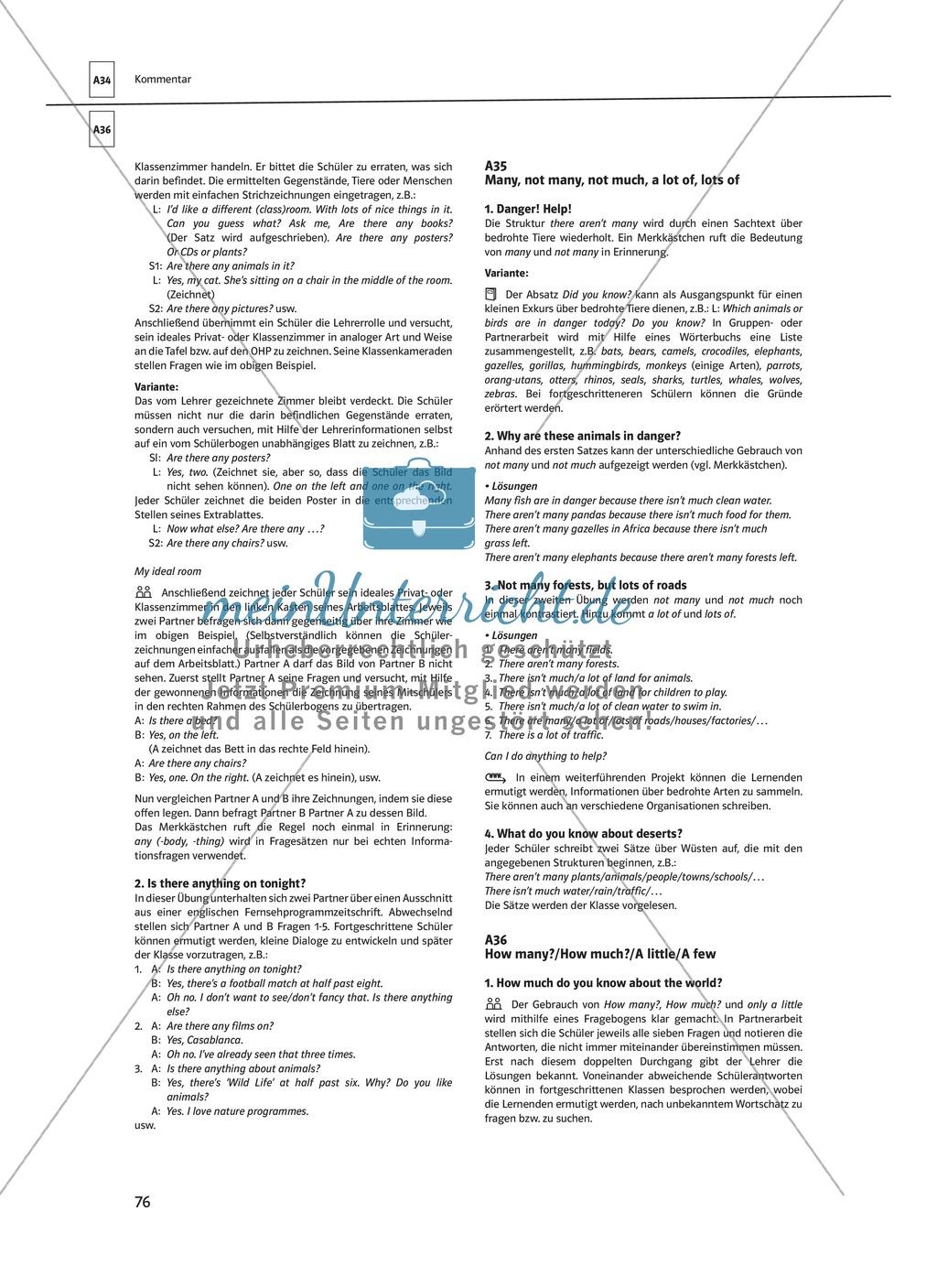 Arbeitsblätter für einen kommunikativen Grammatikunterricht: Mengenangaben Preview 6