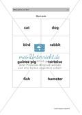 Englischen Wortschatz zum Thema