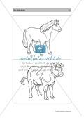 Englischen Wortschatz erarbeiten: animals on the farm + numbers Preview 6