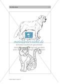 Englischen Wortschatz erarbeiten: animals on the farm + numbers Preview 7