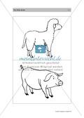 Englischen Wortschatz erarbeiten: animals on the farm + numbers Preview 8