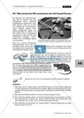 Chemie, Biochemie, Nahrungsmittelinhaltsstoffe, Lebensmittelchemie, alltagsbezug