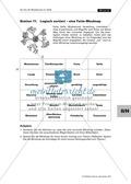 Fette im Modell, Zuordungsspiel zu Fachbegriffen, Mindmap erstellen zu Fetten Thumbnail 2