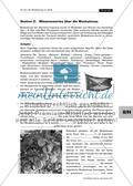 """Von der Muskatnuss zur Seife – ein Lernzirkel zum Thema """"Fette"""" Preview 7"""