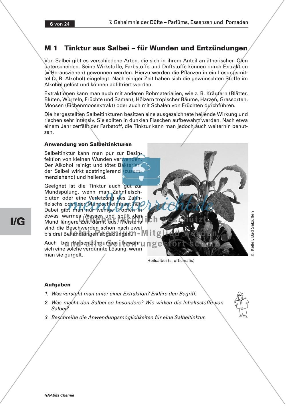 Herstellung einer Salbei-Tinktur durch Extraktion und Informationen zu seiner Anwendung bei Entzündungen Preview 0