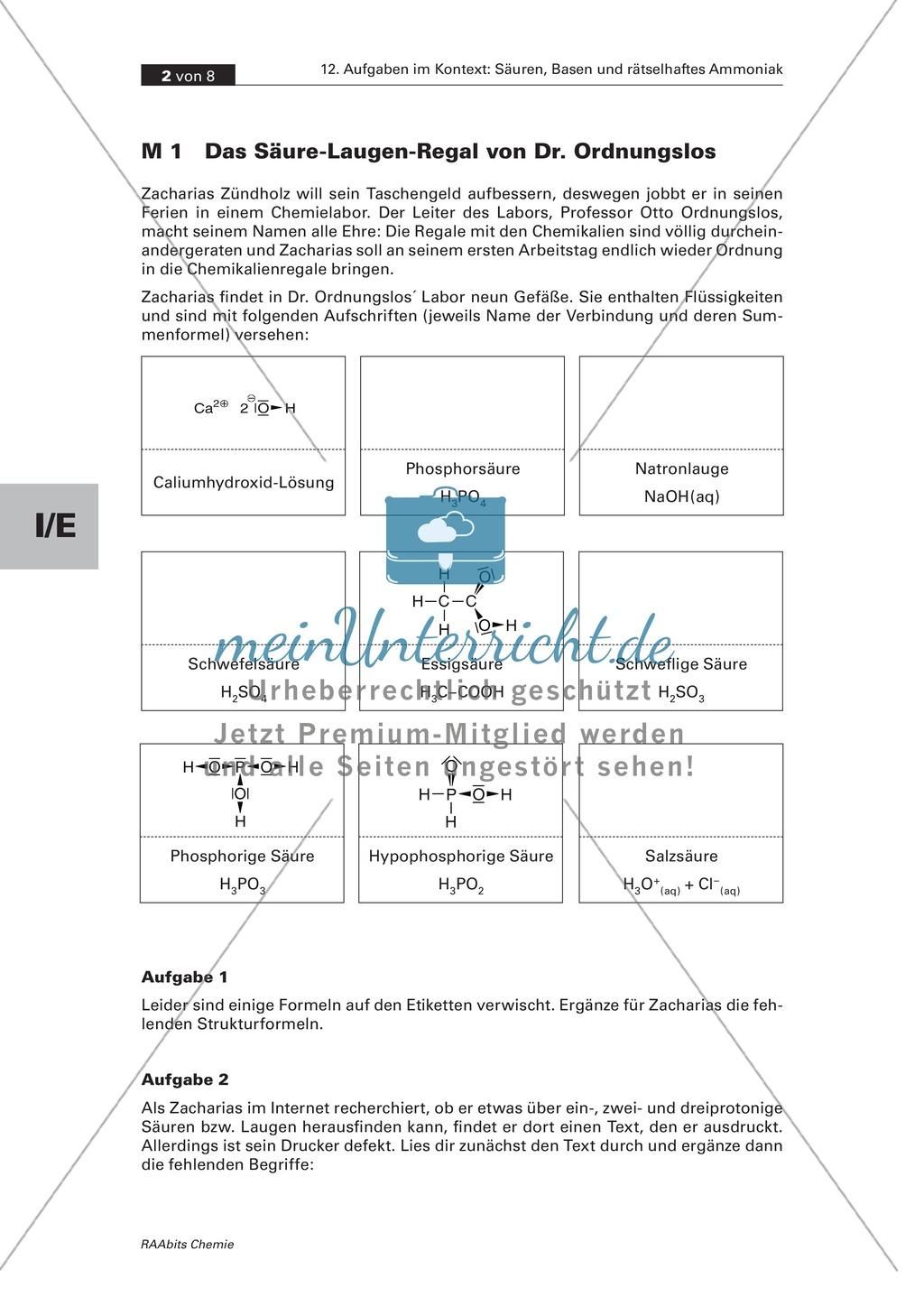 Kontextbezogene Aufgaben zur Festigung der Säure-Base-Theorie nach Brönsted und der Chemie von Ammoniak Preview 1