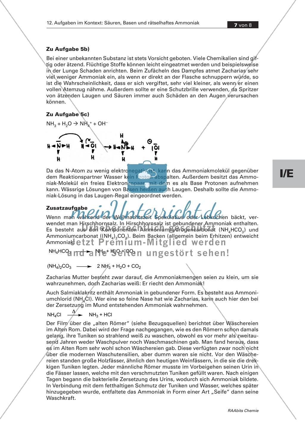 Kontextbezogene Aufgaben zur Festigung der Säure-Base-Theorie nach Brönsted und der Chemie von Ammoniak Preview 6