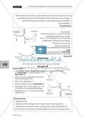 Das chemische Gleichgewicht beim natürlichen Kalkkreislauf Thumbnail 4