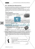 Einfache Schülerversuche zur Reaktionskinetik mit Bäckerhefe Preview 6