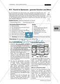 Qualitativer Nachweis von Zusatzstoffen im Speisesalz Preview 2