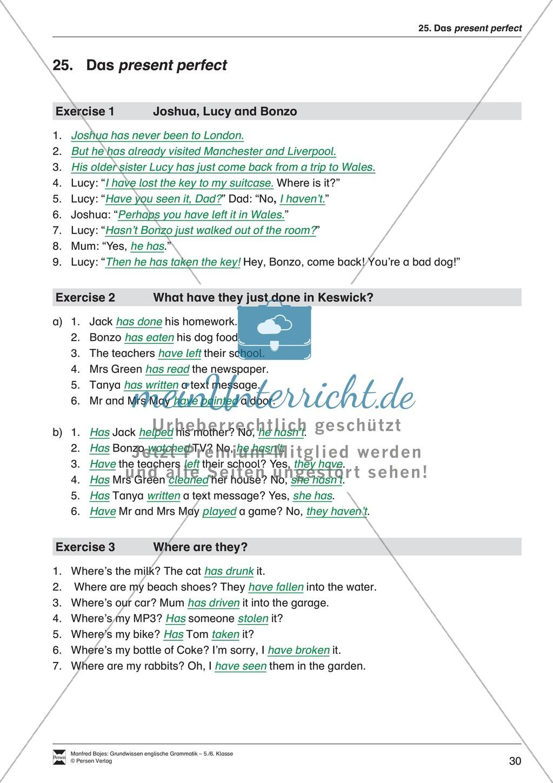 Die Personalpronomen: Erklärung + Beispiele + Übungen Preview 33