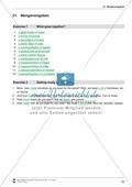 Die Personalpronomen (Objektformen): Erklärung + Beispiele + Übungen Preview 28