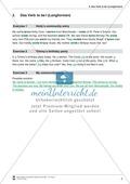 Die Personalpronomen (Objektformen): Erklärung + Beispiele + Übungen Preview 6
