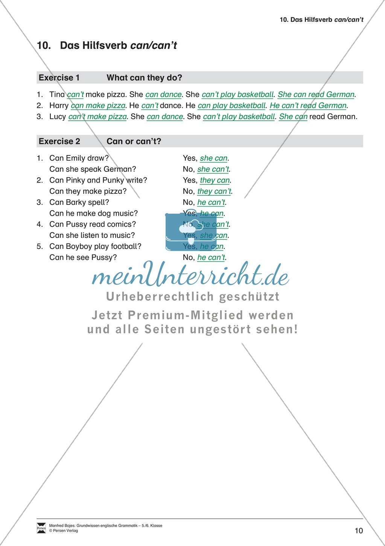 Die Demonstrativpronomen this, that und these, those: Erklärung + Beispiele + Übungen Preview 12
