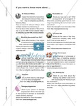 Unterrichtseinheit zur Arbeit mit Zeitungsartikeln: Inhaltliche und strukturelle Erfassung von Artikeln, eigene Artikel schreiben. Mit hilfreichen Links, Arbeitsblättern und didaktischen Erläuterungen. Preview 4