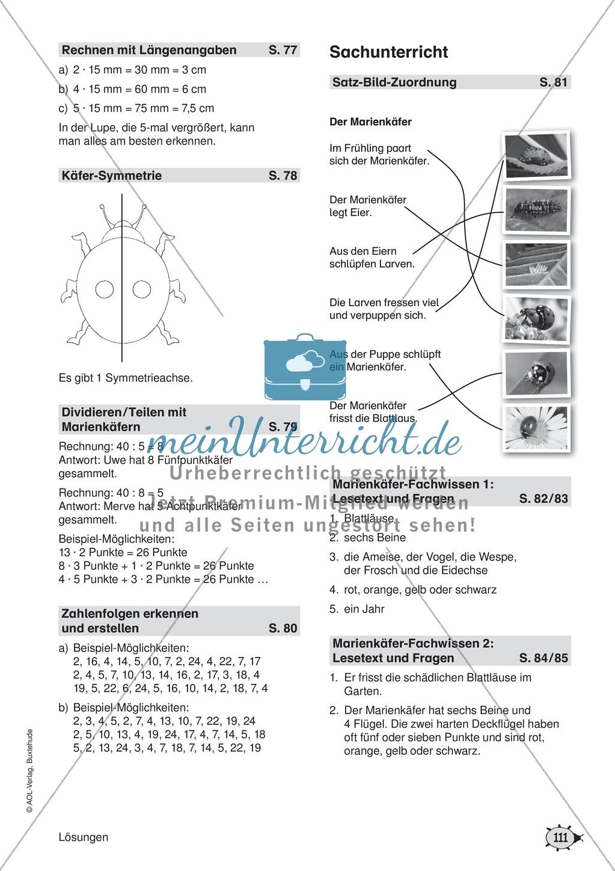 Übungsblätter für das Fach Mathematik zum Thema \