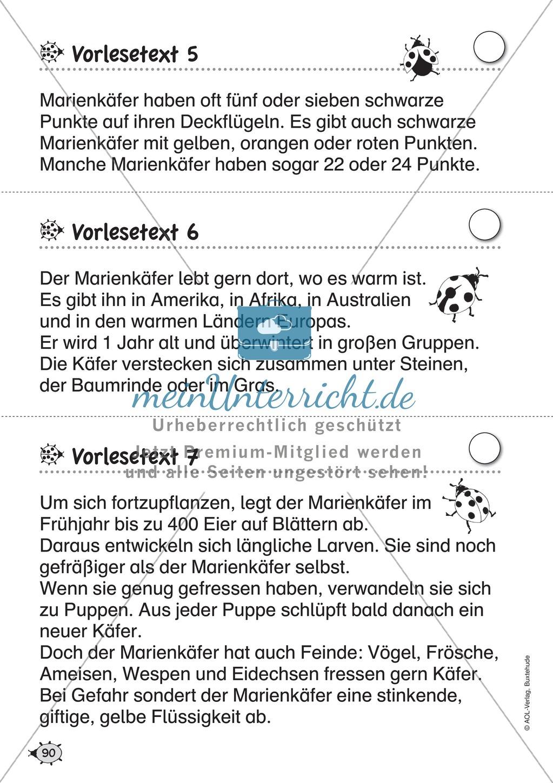 Groß Klasse 1 Mathe Arbeitsblatt Australien Bilder - Super Lehrer ...
