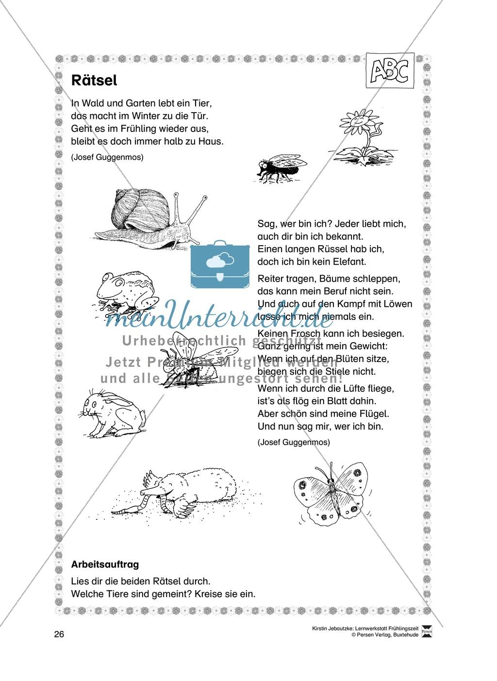 Übungsaufgaben für das Fach Deutsch zum Thema Frühling Preview 7