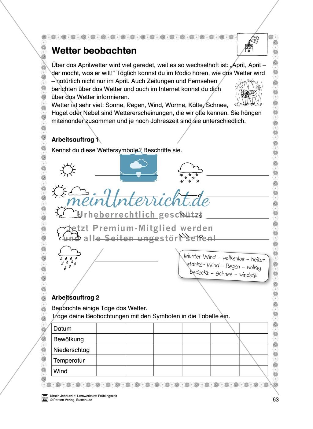 Aufgaben für das Fach Sachkunde zum Thema Frühling Preview 12