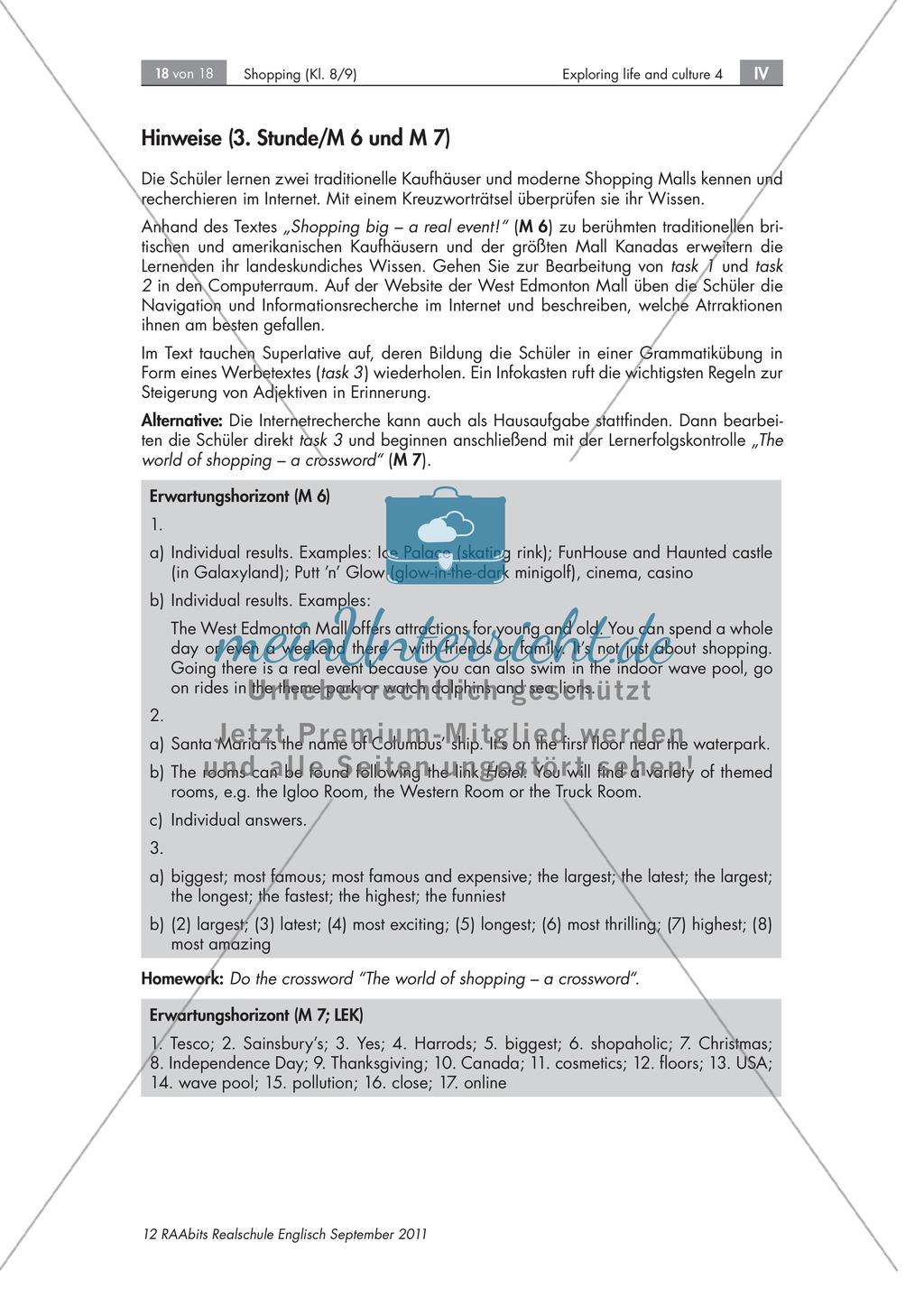 Einkaufsgewohnheiten in Großbritannien, Kanada und den USA kennenlernen : Übungen zur Lesekompetenz und Textverständnis + Kopiervorlagen Preview 12