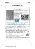 All about the mistletoe: Informationstexte zum Mistelzweig und Weihnachten. Mit Bild als Wortschatzübung, didaktischen Anmerkungen und Erwartungshorizont. Preview 2