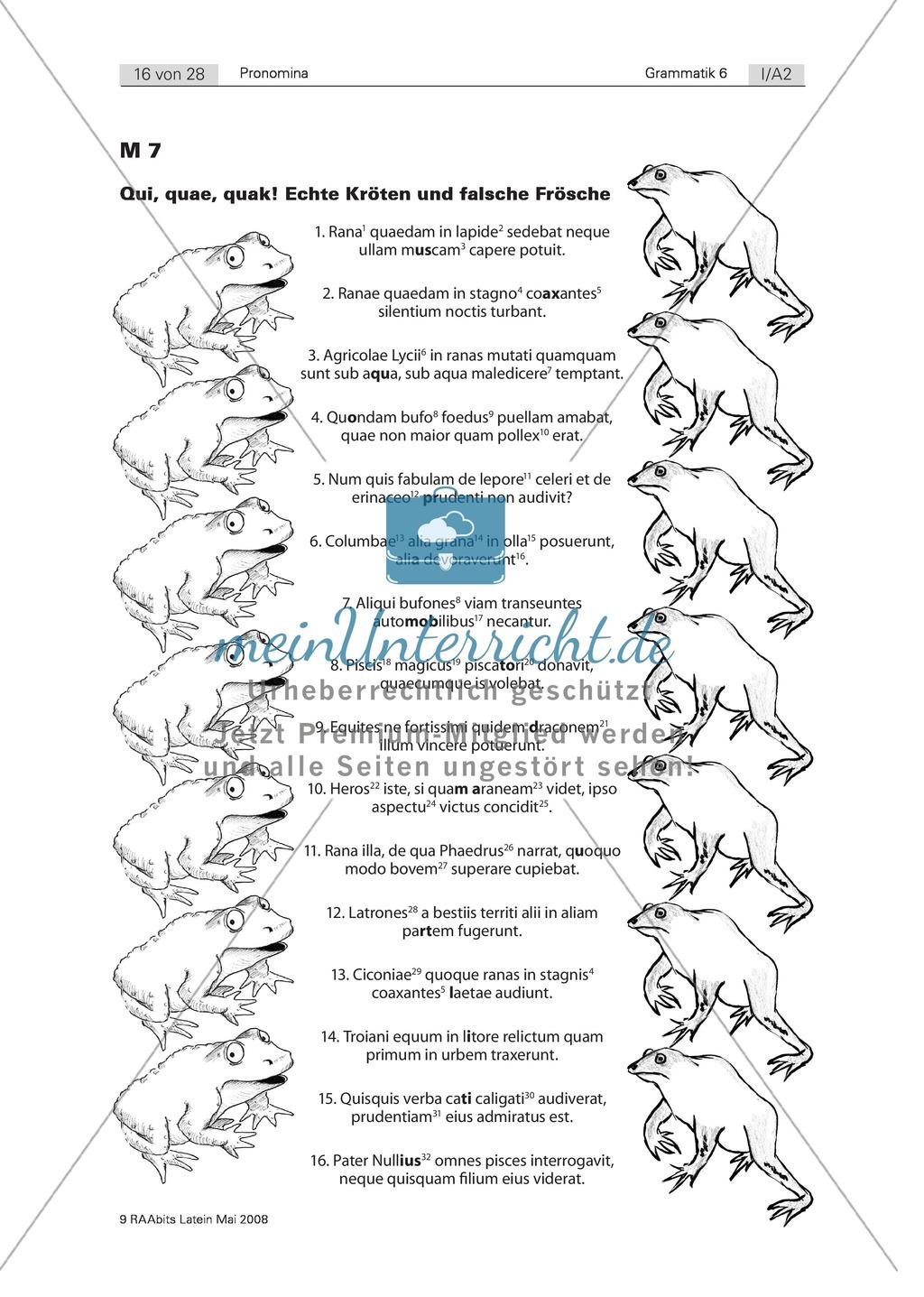 Tierische Übungen: Zerlegen eines Monsters zum Erkennen von ...