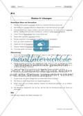Fit in den nd-Formen! Lernzirkel zur Grammatikwiederholung Preview 15