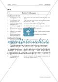 Fit in den nd-Formen! Lernzirkel zur Grammatikwiederholung Preview 19