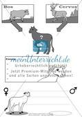 Wundersame Tierwelt (1) Preview 1