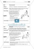 In Nowitzkis Fußstapfen - vom 2 : 2 zum Streetball. Eine Doppelstunde zum Thema: In-and-out-Bewegungen: Freilaufen und Anbieten. Preview 8
