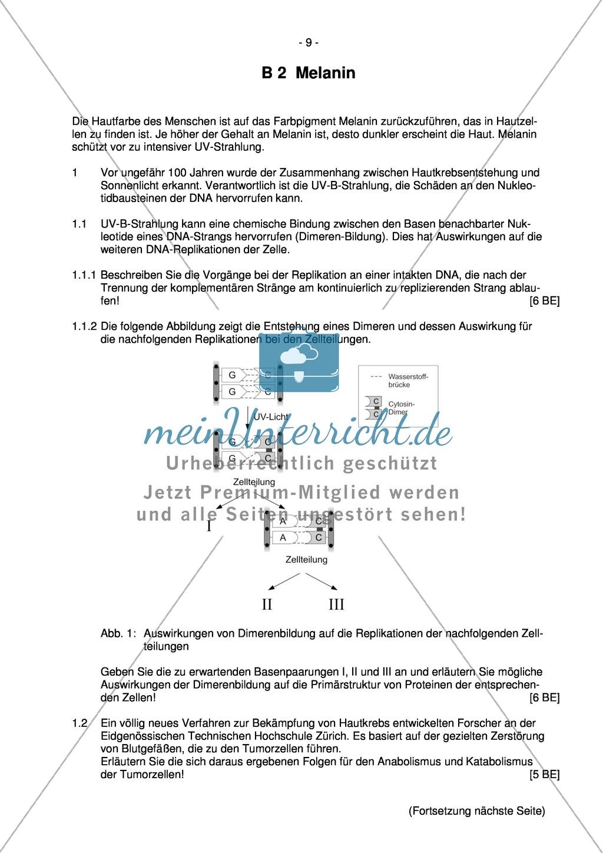 Abituraufgaben Bayern 2012: Aufgaben zu Ökologie, Genetik, Verhalten und Evolution. Mit Arbeitsmaterial. Preview 7