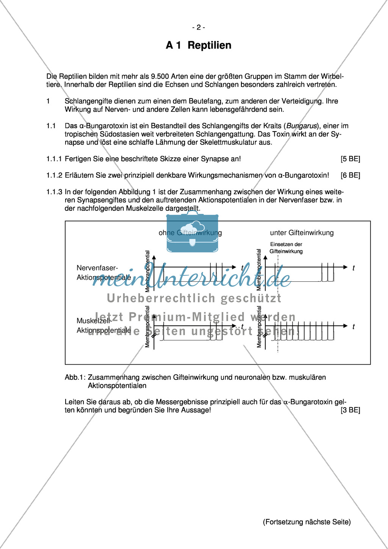 Abituraufgaben Bayern 2013 zu Neurobiologie,Verhalten,Genetik,Physiologie Preview 0