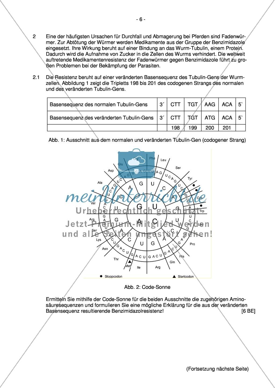 Abituraufgaben Bayern 2013 zu Neurobiologie,Verhalten,Genetik,Physiologie Preview 4