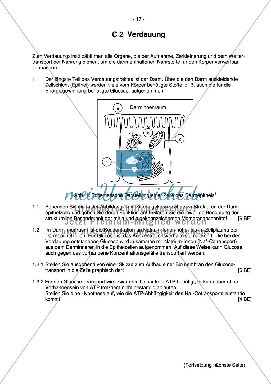 Abituraufgaben Bayern 2013:Erläutern von Stoffwechselprozessen am Beispiel Darm und Mund mit Bezug zur Enzymaktivität.Mit Arbeitsmaterial. Preview 0