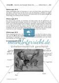 """Max Ernst: """"Der Hausengel"""" – Bildbetrachtung und praktische Umsetzung """"Fantasiewesen"""" (Klasse 7/8) Preview 10"""